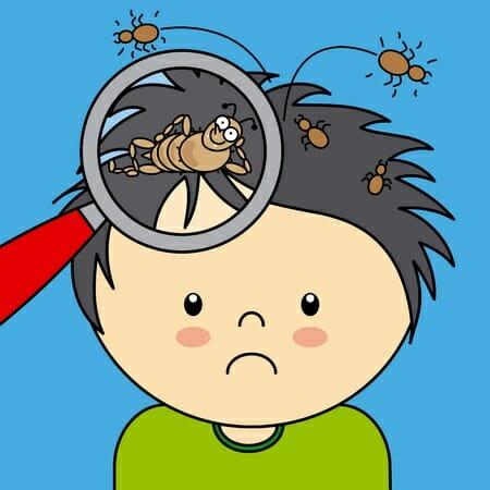 comb-clipart-lice-7